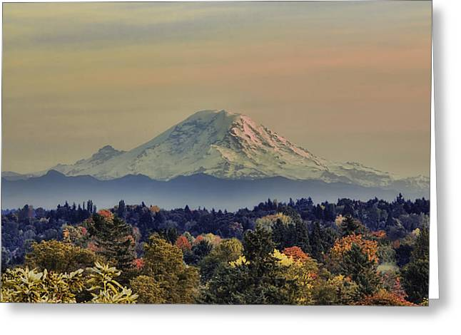 Snow Tree Prints Photographs Greeting Cards - Mt Rainer Fall Color Rising Greeting Card by James Heckt