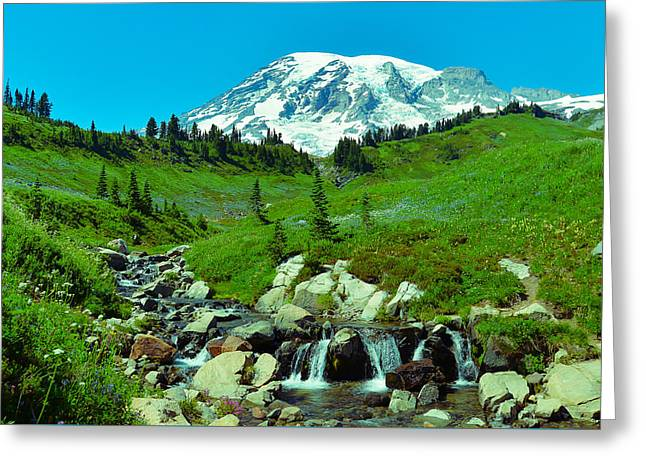 Collection Of Rocks Greeting Cards - Mt Rainier Greeting Card by Abhay P