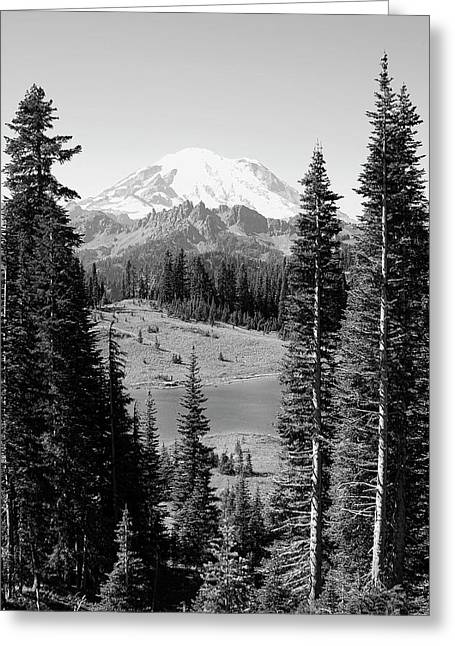 David Patterson Greeting Cards - Mt Rainier from Chinook Pass Greeting Card by David Patterson