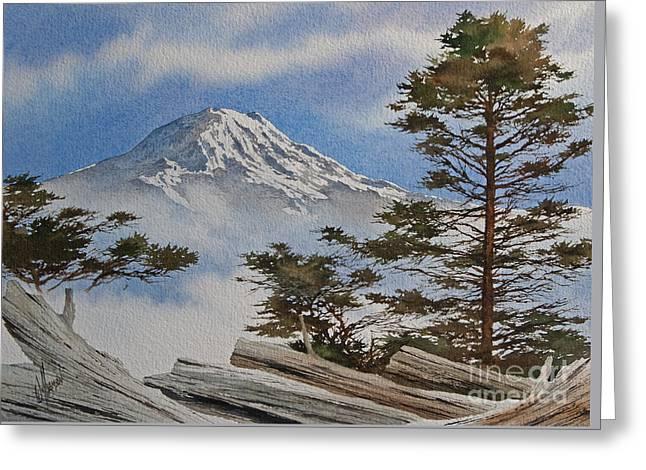 Landscape Framed Prints Greeting Cards - Mt. Rainier Landscape Greeting Card by James Williamson