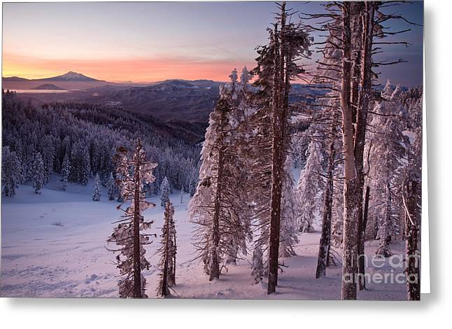 Mt. Shasta Greeting Cards - Mt. Shasta Sunrise Greeting Card by Sean Bagshaw
