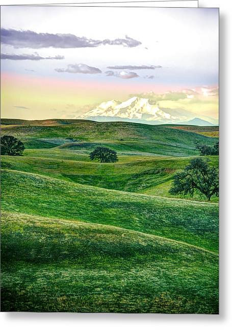 Shasta Greeting Cards - Mt Shasta with Glenn-Tehama Foothills Greeting Card by Ron Schwager