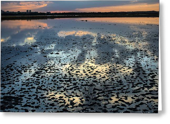 Mud Season Greeting Cards - Mud Reflections Greeting Card by Radoslav Nedelchev