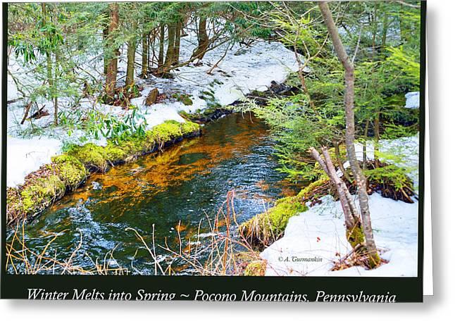 Mud Season Greeting Cards - Mud Run Pocono Mountain Stream Pennsylvania Season Change Greeting Card by A Gurmankin