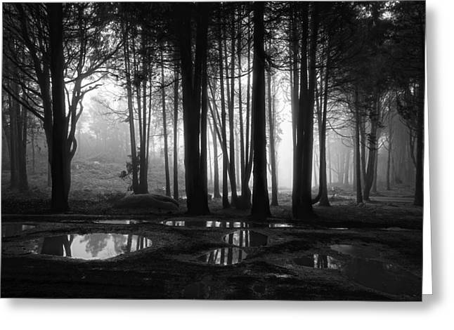 Puddle Greeting Cards - Muddy Ground Greeting Card by Marco Oliveira