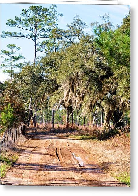 Muddy Road Greeting Card by Jan Amiss Photography