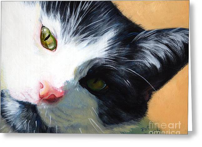 Cat Face Greeting Cards - Muff Greeting Card by Pat Burns