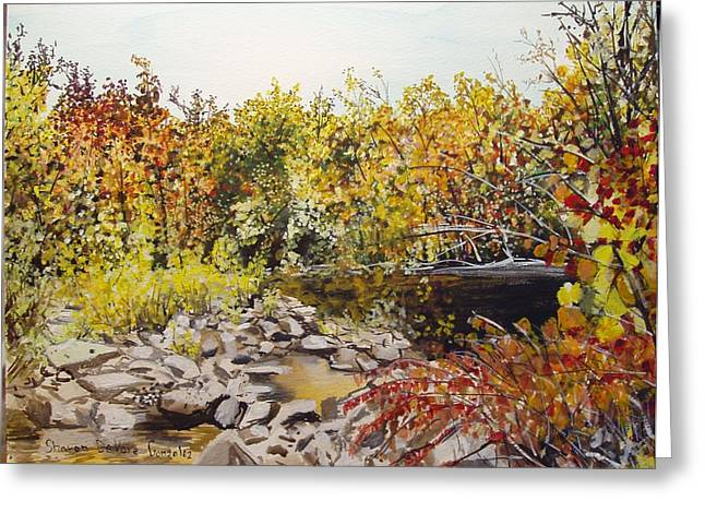 Arkansas Paintings Greeting Cards - Mulberry River in Fall Another View Greeting Card by Sharon  De Vore