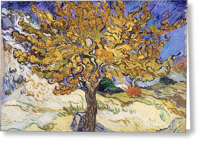 Gogh Greeting Cards - Mulberry Tree Greeting Card by Vincent Van Gogh