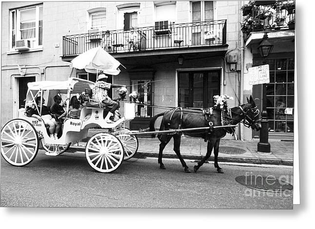 Mule And Buggy French Quarter New Orleans Greeting Card by Thomas R Fletcher