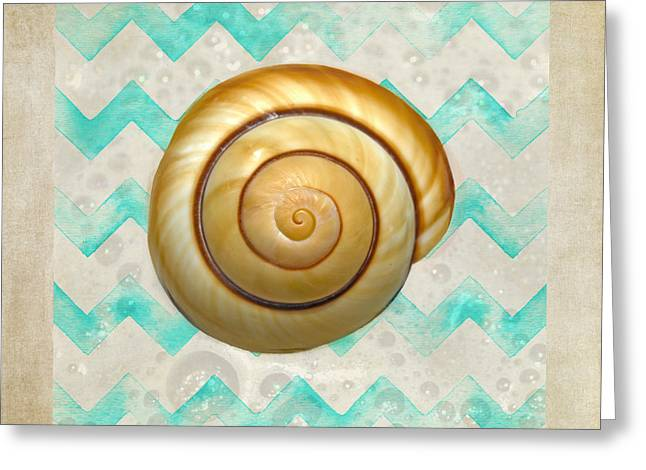 North Sea Greeting Cards - Mullusk Sea Shell In Modern Waves Greeting Card by Sandi OReilly