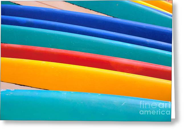 Surfing Art Greeting Cards - Multitude Of Surfboards Greeting Card by Vince Cavataio - Printscapes