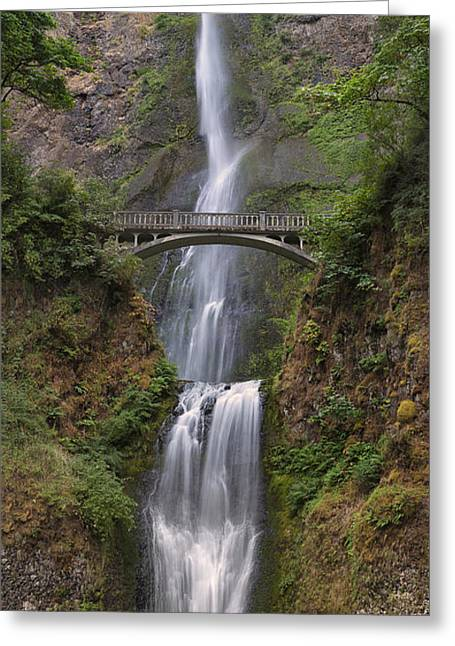 Scenic Drive Greeting Cards - Multnomah Falls - Columbia River Gorge Greeting Card by Sandra Bronstein