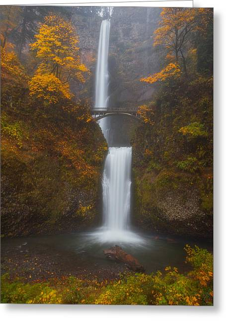 Oregon Photography Greeting Cards - Multnomah Mist Greeting Card by Darren  White