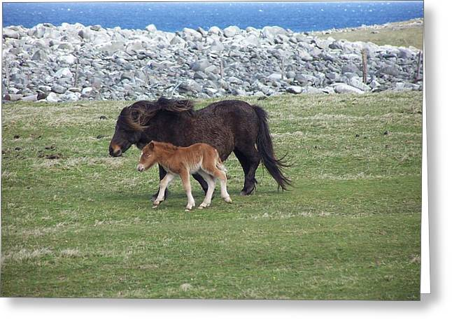 Mum And Daughter On A Windy Day Greeting Card by George Leask