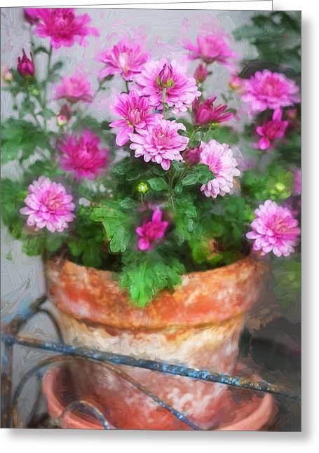 Asters Greeting Cards - Mums Chrysanthemum Painted 5 Greeting Card by Rich Franco