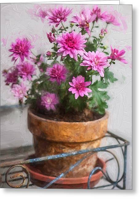 Asters Greeting Cards - Mums Chrysanthemum Painted 6 Greeting Card by Rich Franco