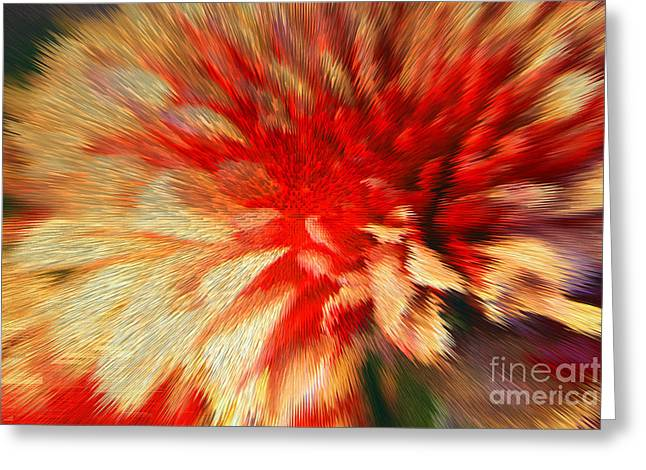 Grounding Greeting Cards - Mums Greeting Card by Kelly Holm