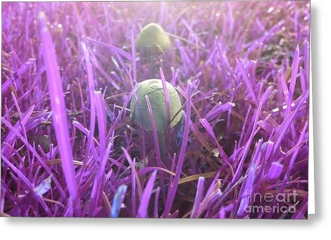 Purple Mushrooms Greeting Cards - Mushrooms In The Park Greeting Card by Jennifer Churchman