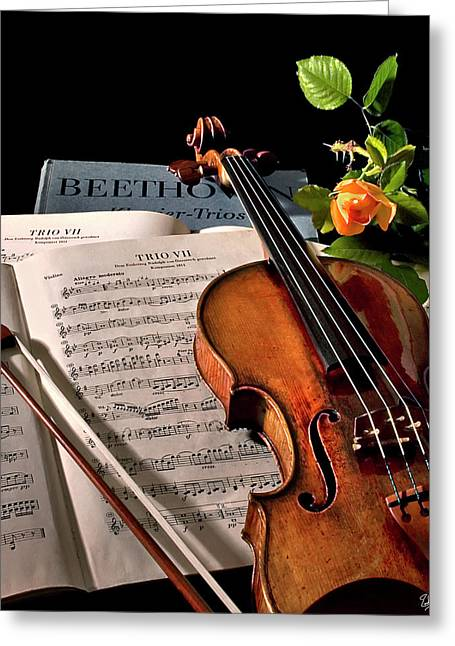 Violin Bows Violin Bows Greeting Cards - Music Is A Moral Law Greeting Card by Endre Balogh