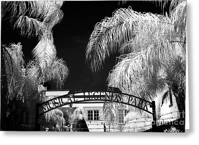 Musical Legends Park Infrared Greeting Card by John Rizzuto