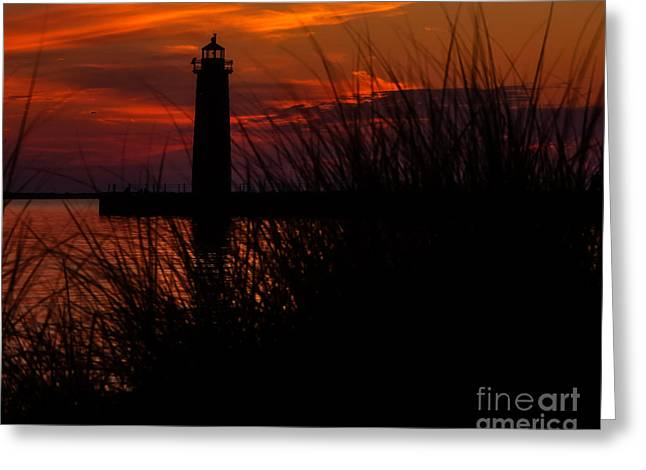 Lake House Greeting Cards - Muskegon Nights Greeting Card by Emily Kay