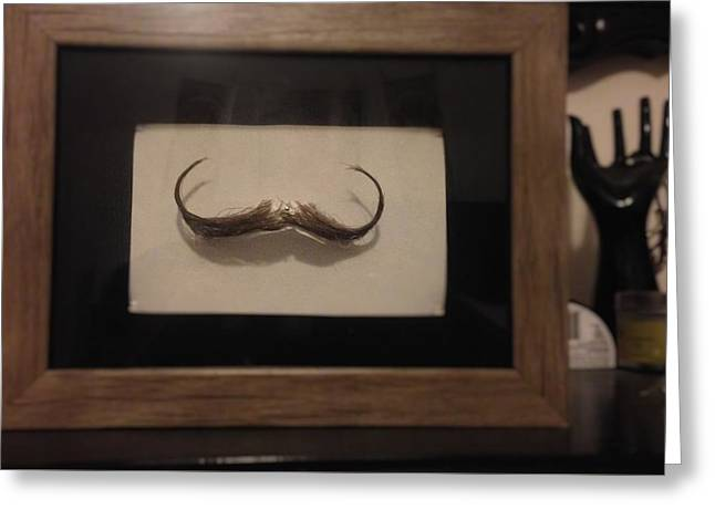 Mustache Sculptures Greeting Cards - Mustache Taxidermy Greeting Card by Ryan Harvey