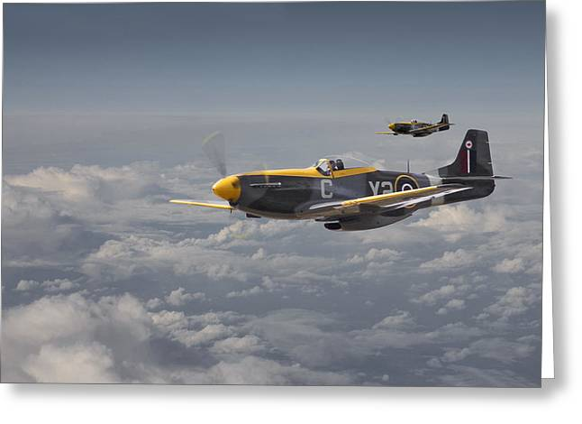 Caribou Greeting Cards - Mustang - 442 Sqdn  RCAF Greeting Card by Pat Speirs