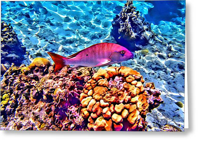 Best Ocean Photography Digital Greeting Cards - Mutton Reef Greeting Card by Anthony C Chen