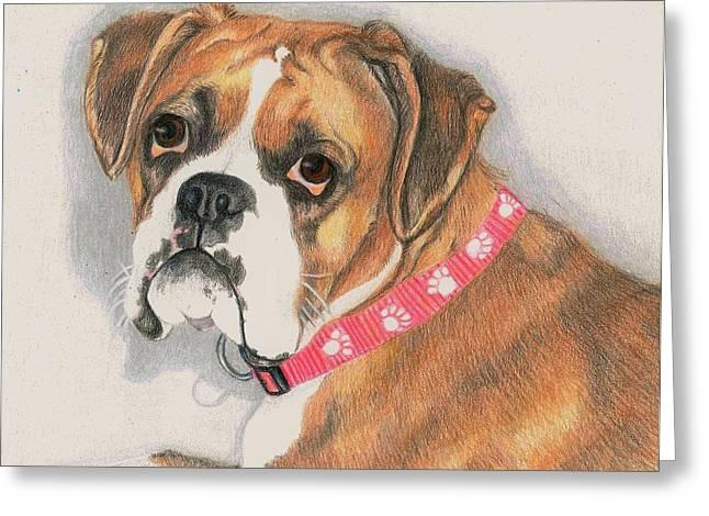Collar Drawings Greeting Cards - Muzzy Greeting Card by JoAnn   Morgan
