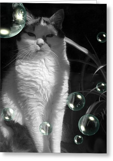 Julian Bralley Greeting Cards - My Baby Greeting Card by Julian Bralley