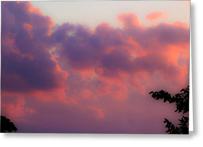 Rectangles Greeting Cards - My Backyard 2 Greeting Card by Donna Fonseca Newton