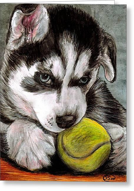 Huskies Mixed Media Greeting Cards - My Ball Greeting Card by Sarah Stanaland