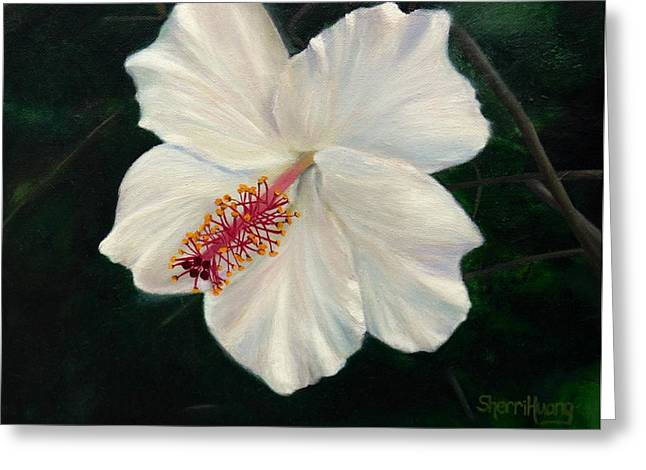 Stigma Greeting Cards - My Dear Hibiscus Greeting Card by Sherri Huang