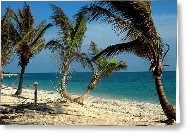 Key West Greeting Cards - My Favorite Beach Greeting Card by Susanne Van Hulst