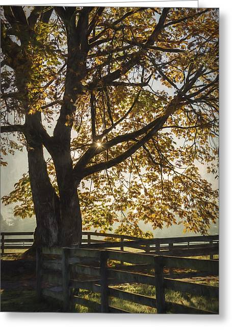 Nature Scene Greeting Cards - My Favorite Season - Autumn Art Greeting Card by Jordan Blackstone
