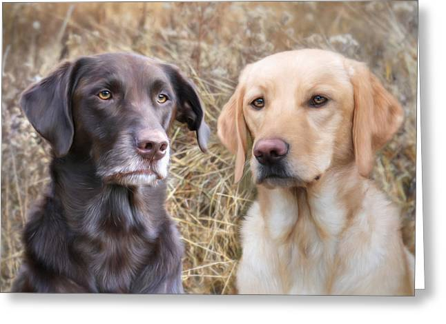 Chocolate Lab Greeting Cards - My Girls Greeting Card by Lori Deiter
