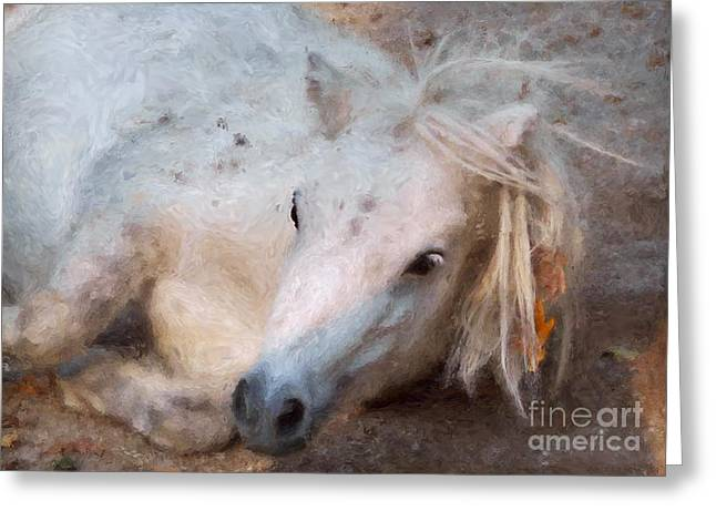 My Little Horse Greeting Card by Angela Doelling AD DESIGN Photo and PhotoArt