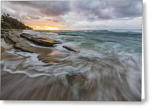 Botanical Beach Greeting Cards - My Morning Joe Greeting Card by Jon Glaser