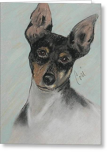 Toy Dog Greeting Cards - My Oh My Greeting Card by Cori Solomon