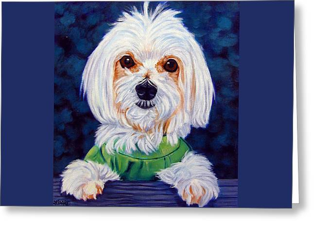 My Sweater - Maltese Dog Greeting Card by Lyn Cook