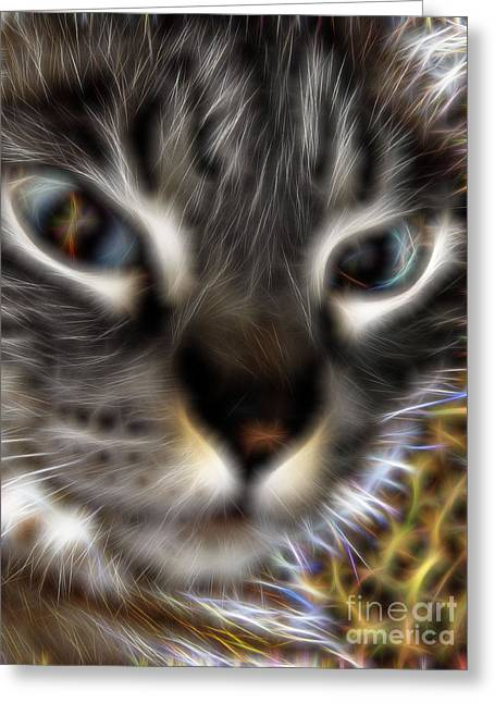 Best Seller Greeting Cards - My Sweet Boy Greeting Card by D Hackett