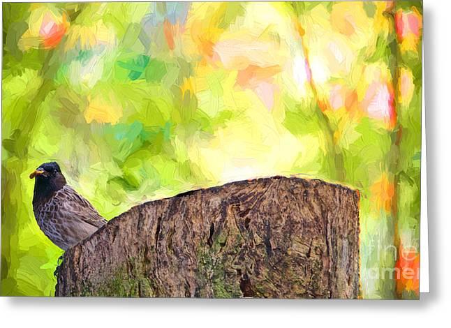 Wild Birds Greeting Cards - My Turn Greeting Card by Judy Kay