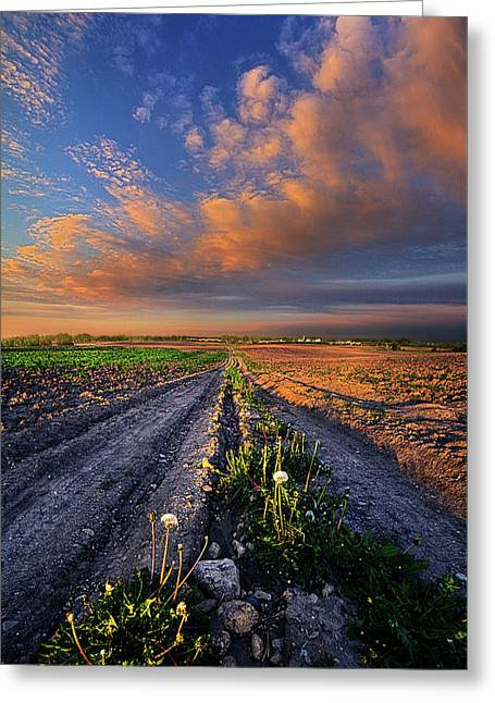 My Way Greeting Card by Phil Koch