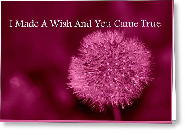 Wishes Greeting Cards - My Wish Greeting Card by Kimberly Woyak