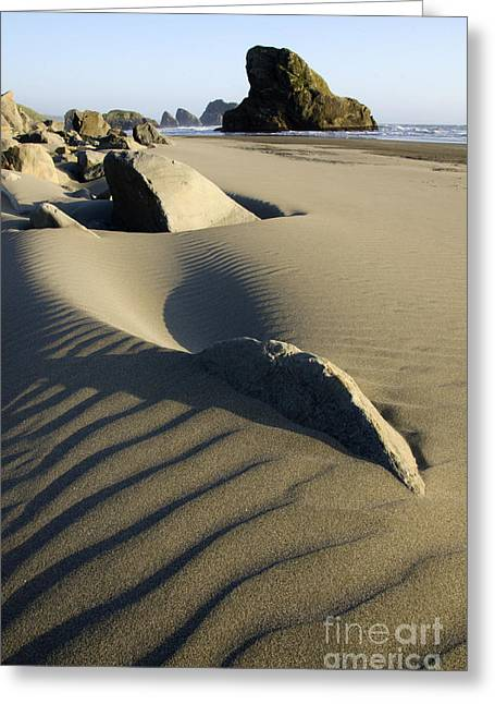 Sand Patterns Greeting Cards - Myers Creek Beach Oregon 1 Greeting Card by Bob Christopher