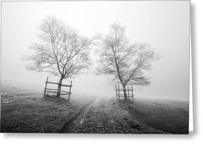 Mysterious Path Surrounding By Trees In Black And White Greeting Card by Mikel Martinez de Osaba