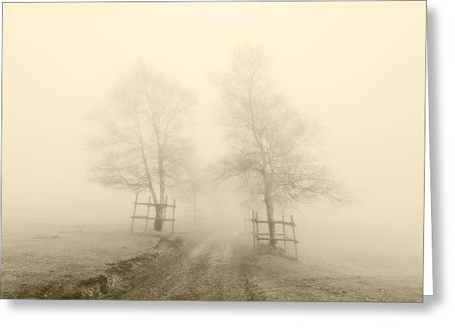 Pais Vasco Greeting Cards - Mysterious Path Surrounding By Trees With Sepia Color Greeting Card by Mikel Martinez de Osaba
