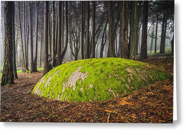 Foggy Day Greeting Cards - Mystic Forest II Greeting Card by Marco Oliveira