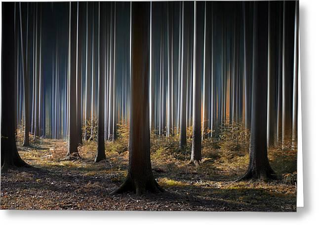 Mystic Wood Greeting Card by Carsten Meyerdierks